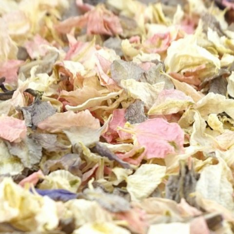 Delphinium & Wildflower Confetti - Rustic - The Dried Petal Company