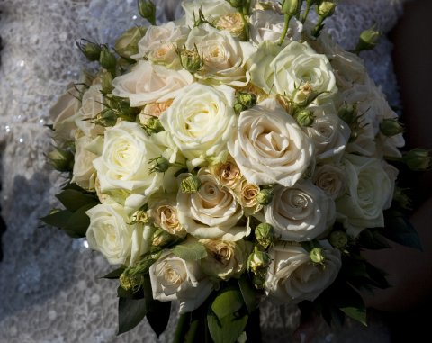 Wedding Flowers and Bouquets - West Dorset Wedding Flowers-Image 14269