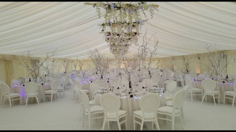 White Louis Chairs - Rosetone Event Furniture