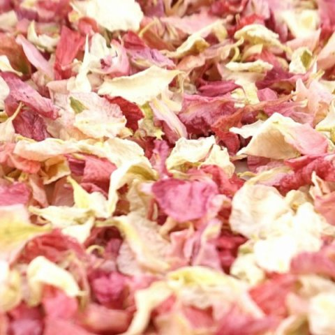 Delphinium & Wildflower Confetti - Raspberry / Vanilla - The Dried Petal Company