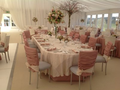 Chair Covers and More