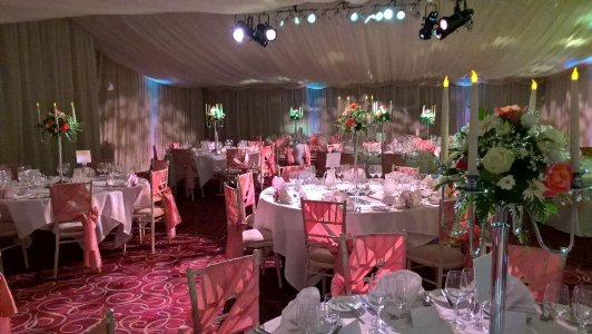 Party Linen Venue Decor Specialists
