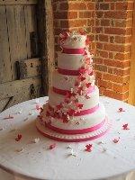Angel Cakes - Hampshire