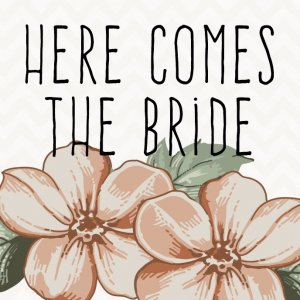 Here Comes The Bride Ltd