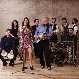 Blue Attic 9-piece band