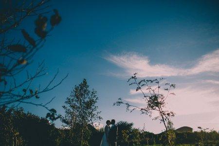 Dan Ward Wedding Photographer Cornwall