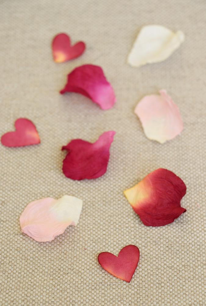 LBB - PAPER TREE paper petals.jpg